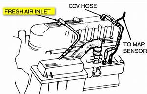 1998 Jeep Grand Cherokee  Cylinder  Engine Oil  A Diagram