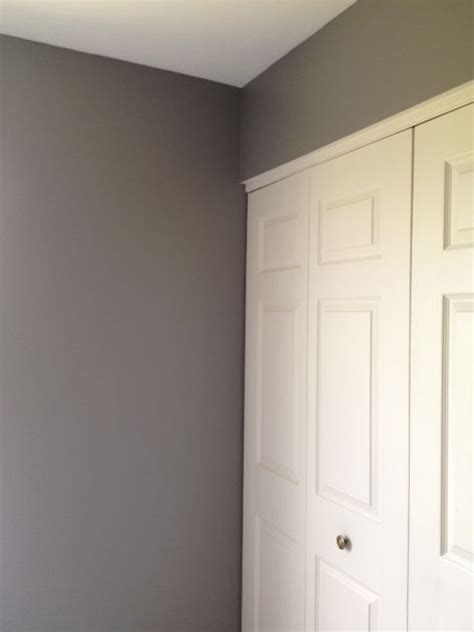 paint color anonymous by behr gray no