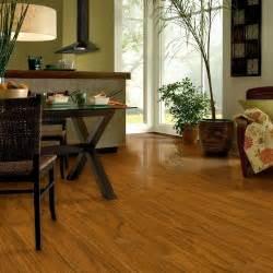 armstrong vs pergo laminate flooring laminate flooring pergo vs armstrong