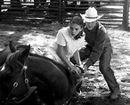 The Horse Whisperer 20th Anniversary: Cow Boy, I Love This ...