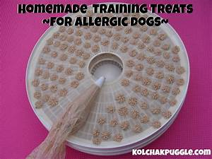 Homemade Training Treats for Dogs with Allergies - Kol's Notes