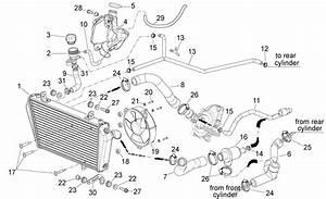 Argh  Radiator Hose Link Broken  Bike U0026 39 S Out Of Action Again