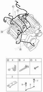 Engine  U0026 Transmission Wiring Harnesses Kia Carnival  Sedona
