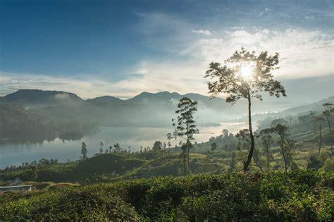 tea trails bungalows luxury hotel sri lanka original travel