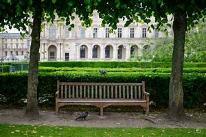 Wooden Park Bench and Ravens Background - High-quality ...