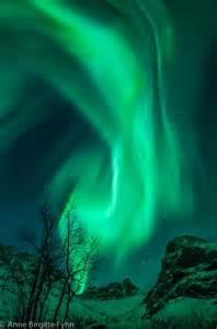 Bing Northern Lights Norway