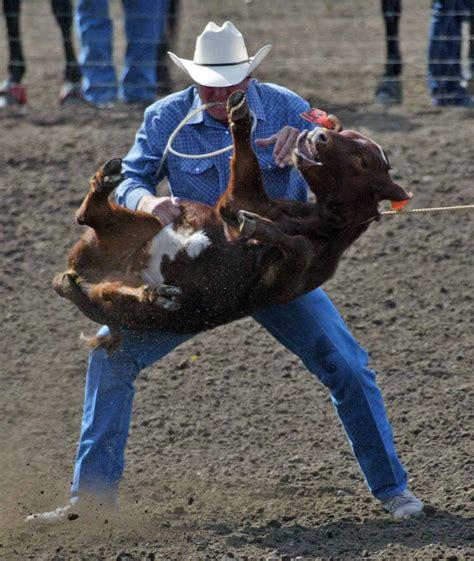 Rodeo Cruelty