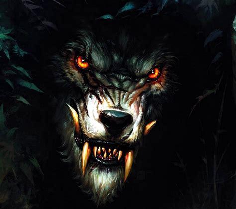 Real Scary Wolf Wallpaper by Wolf Wallpaper By X Tive 9d Free On Zedge