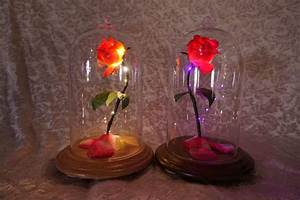 Rose In Glas : beauty and the beast enchanted rose mini life size lighted belle glass dome ebay ~ Frokenaadalensverden.com Haus und Dekorationen