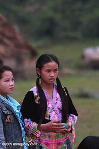 Hmong girl waiting for boys to play pov pob, a traditional ...
