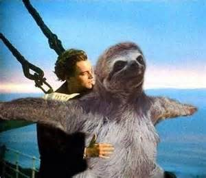 Sloth Titanic