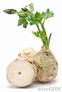 Of Celery Plant