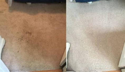 Rug Cleaning Raleigh by Get The Best Raleigh Nc Certified Carpet Cleaning