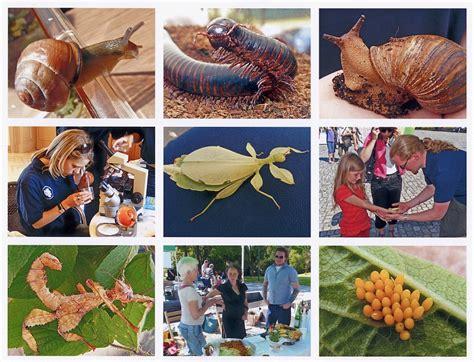 Botanischer Garten Bonn Tag Der Artenvielfalt by 13 07 2009 Geo Tag Der Artenvielfalt Botanischer