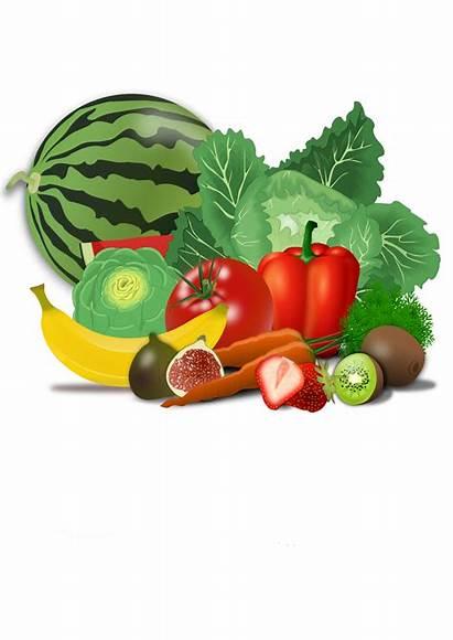 Clipart Vegetables Kid Transparent Fresh Fruit Webstockreview