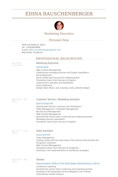 16328 marketing executive resume 24 best sle executive resume templates wisestep