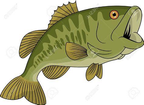Bass Clipart Fish Vector Illustration Of Bass Fish