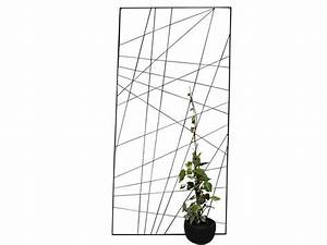 Treillage Plante Grimpante : treillage m tal ipom e jany ~ Dode.kayakingforconservation.com Idées de Décoration