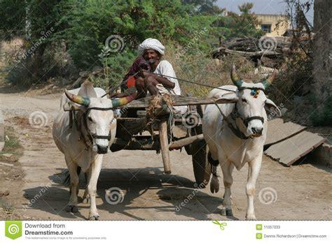indian cart bullock cart india stock photos royalty free pictures