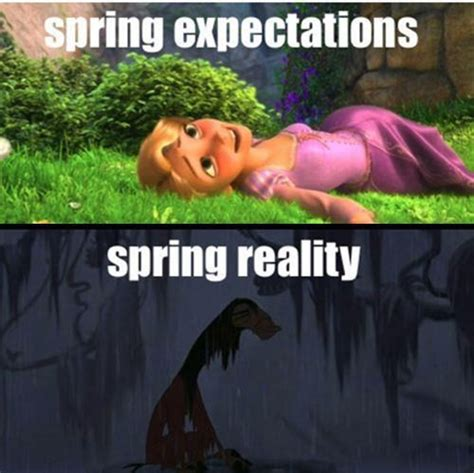 Spring Memes - winter how the hell did i end up here
