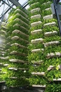 Urban Gardening Definition : vertical farming indoor agriculture ~ Eleganceandgraceweddings.com Haus und Dekorationen