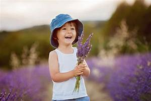 Lavendel Im Topf überwintern : lavendel berwintern so sch tzen sie ihn vor der k lte ~ Frokenaadalensverden.com Haus und Dekorationen