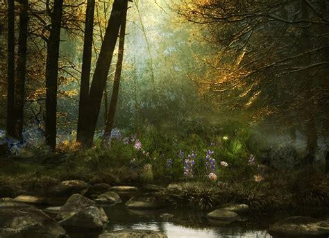 mystical forest wallpaper wallpapersafari