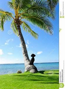 Dog Palm Tree Royalty Free Stock Photography - Image: 17202547
