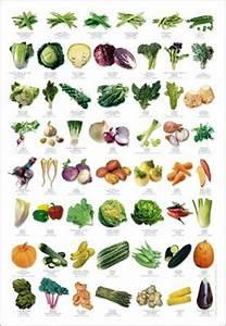 Gemüse Bilder Zum Ausdrucken : gem se vegetables l gumes olusculum poster im kinderpostershop ~ Buech-reservation.com Haus und Dekorationen