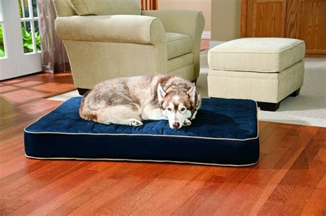 togo replica sofa the best orthopedic beds whole journal