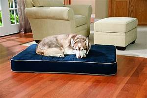 the best orthopedic dog beds whole dog journal With best dog beds for puppies