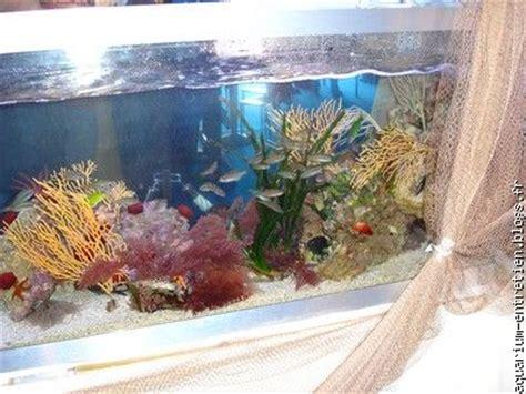 entretien d aquarium vente de fish spa blogs fr le multim 233 dia 100 facile et gratuit