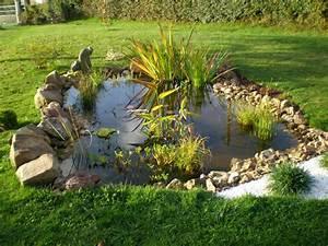 Bassin De Jardin Pour Poisson : bassin ornement jardin bassin de jardin ~ Premium-room.com Idées de Décoration