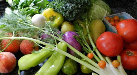 cuisiner des gardons comment manger 5 fruits et légumes par jour et si possible