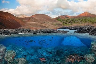 Ascension Island Transat Marine Protected Fishing Area