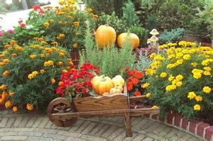 Herbst Im Garten Was Ist Zu Tun by Herbstbeginn Was Noch Im Garten Zu Tun Ist Garten