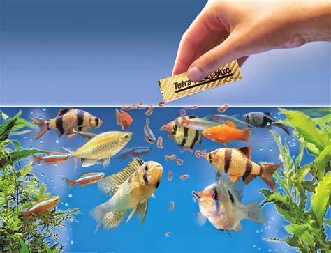 types  aquarium fish food types  nutritional values