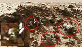 Curiosity latest images show unexplained objects on Mars ...
