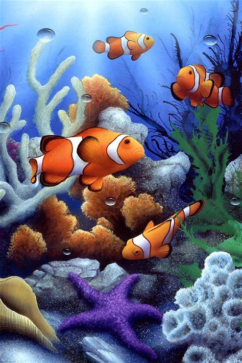 bunte unterwasserwelt korallen und fische iphone