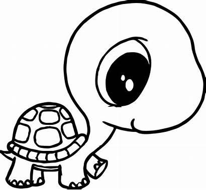 Coloring Turtle Head Tortoise Animal Wecoloringpage
