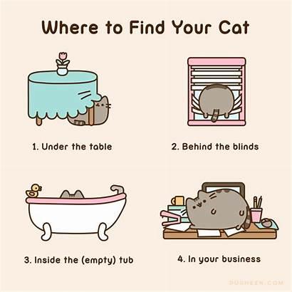 Pusheen Cat Where Cats Comics Stormy Leche