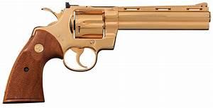 A Golden Colt Python