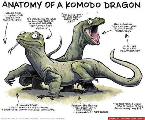 Dragon Memes - anatomy of a komodo dragon meme guy