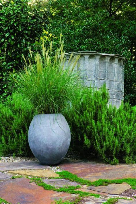 winterharte graser garten gräser im garten ziergras im kübel in szene setzen