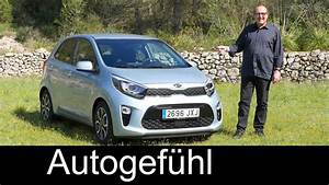 Kia Picanto Full Review Test Driven All