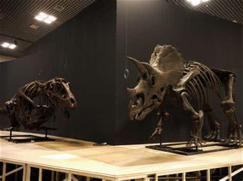 ツge si鑒e auto 6550万年前v 蘇ょ fティラノサウルス送 リケラトプスv