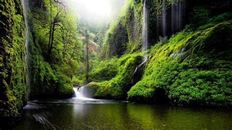 Oregon, River, Water, Waterfalls, Nature, Forest, Woods