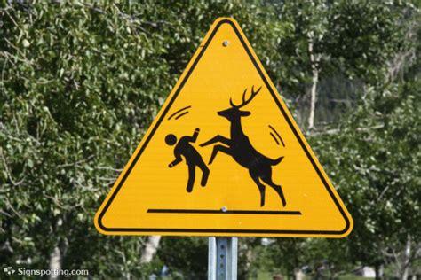 eyebrow raising animal crossing signs    world