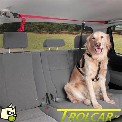 nettoyage siege cuir voiture trolley d 39 attache pour chien sur banquette arriere de voiture