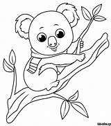 Koala Coloring Tree Printable sketch template